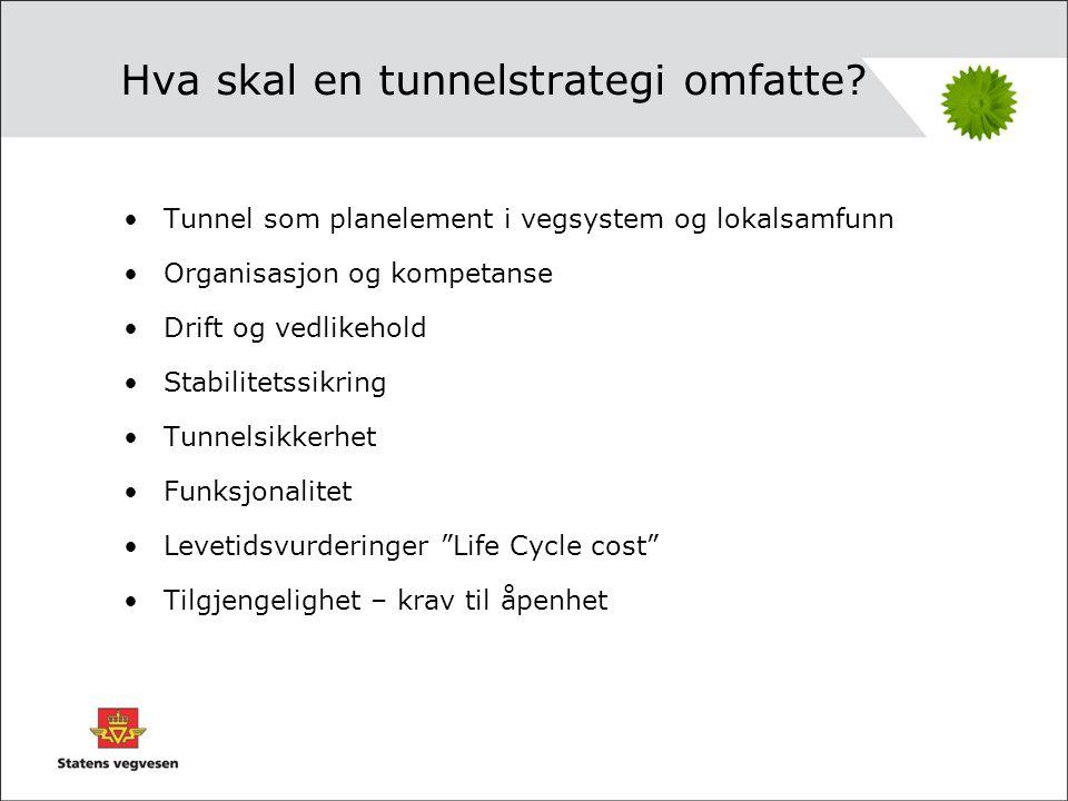 Strategi for vegtunneler •Arbeidet med tunnelstrategi skal forankres i ELM i møte 28 august 2008