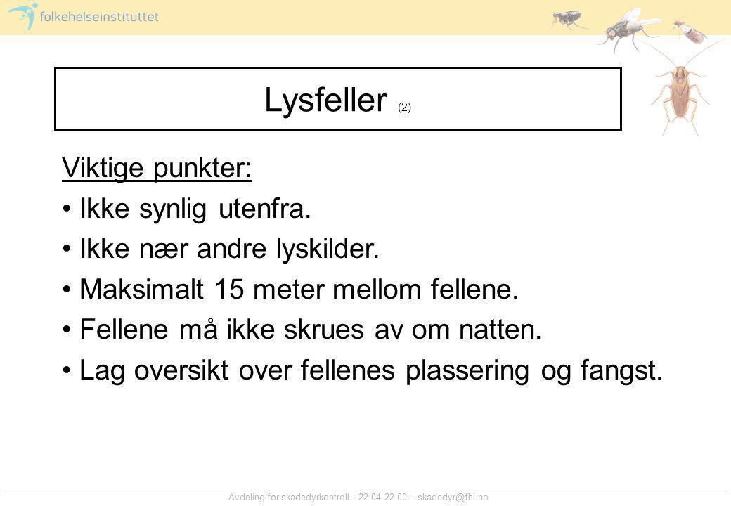 Avdeling for skadedyrkontroll – 22 04 22 00 – skadedyr@fhi.no Lysfeller (2) Viktige punkter: • Ikke synlig utenfra.