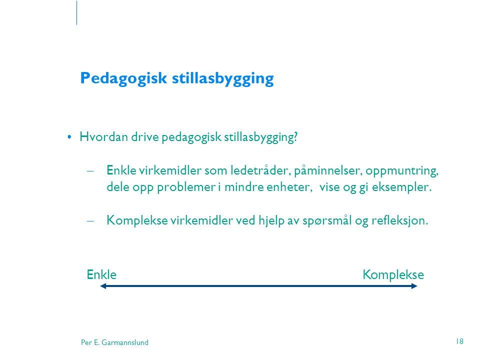 Per E. Garmannslund 18 Pedagogisk stillasbygging •Hvordan drive pedagogisk stillasbygging? – Enkle virkemidler som ledetråder, påminnelser, oppmuntrin