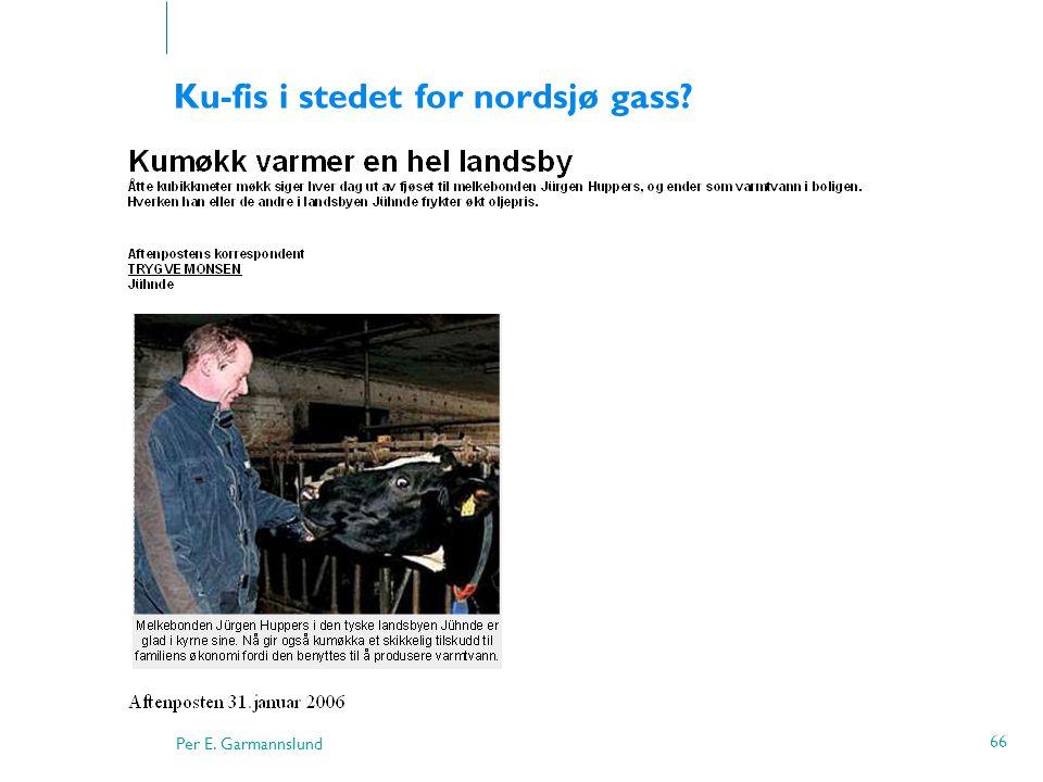 Per E. Garmannslund 66 Ku-fis i stedet for nordsjø gass?
