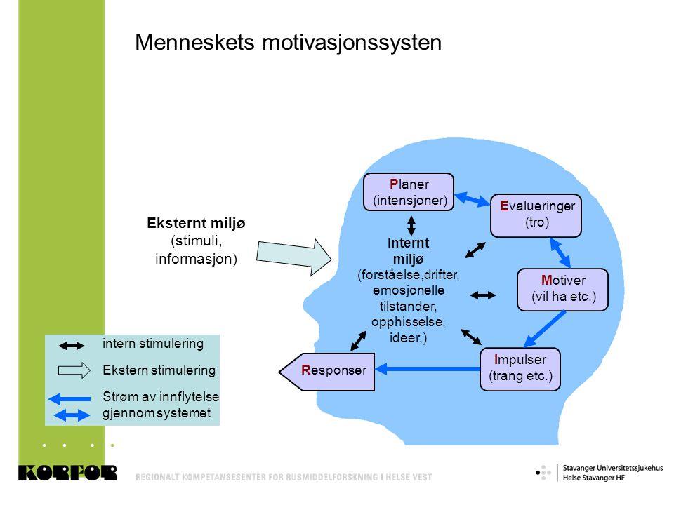 Menneskets motivasjonssysten Eksternt miljø (stimuli, informasjon) Responser Impulser (trang etc.) Motiver (vil ha etc.) Evalueringer (tro) Planer (in