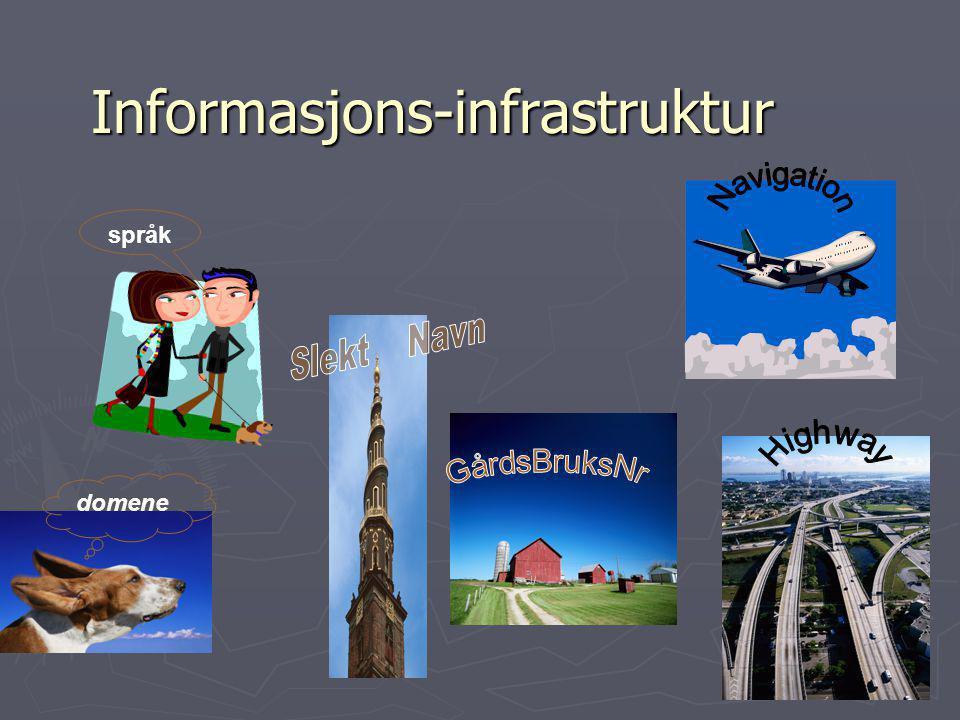 Informasjons-infrastruktur domene språk