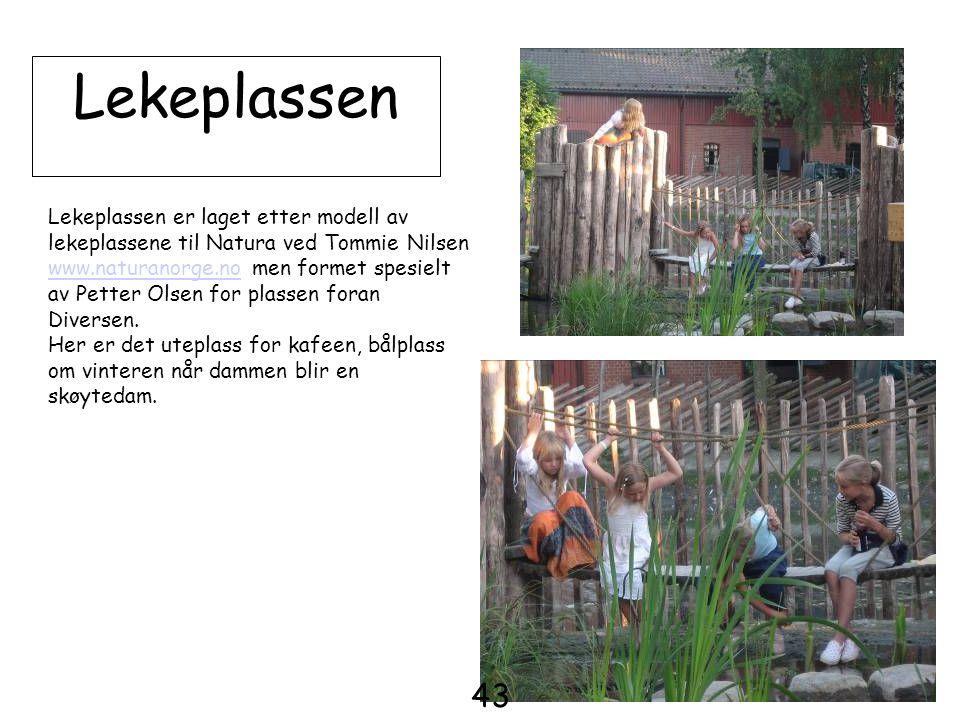 Lekeplassen Lekeplassen er laget etter modell av lekeplassene til Natura ved Tommie Nilsen www.naturanorge.nowww.naturanorge.no men formet spesielt av