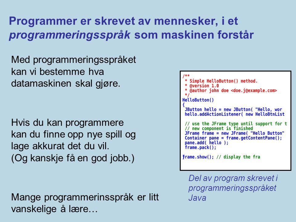 Programmer er skrevet av mennesker, i et programmeringsspråk som maskinen forstår Med programmeringsspråket kan vi bestemme hva datamaskinen skal gjør