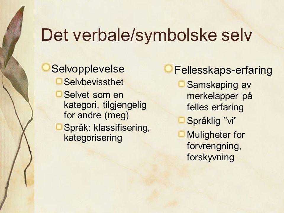Det verbale/symbolske selv Selvopplevelse Selvbevissthet Selvet som en kategori, tilgjengelig for andre (meg) Språk: klassifisering, kategorisering Fe