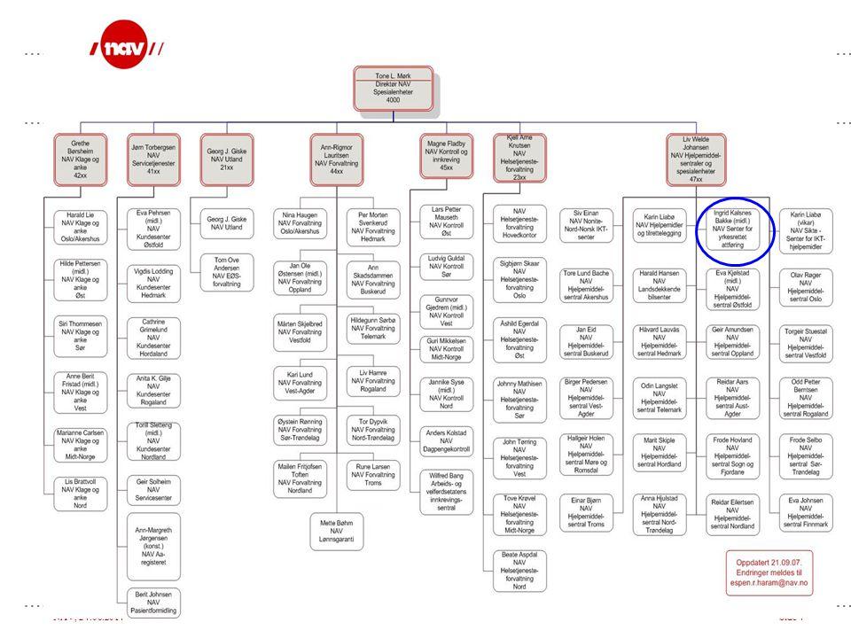 NAV, 24.06.2014Side 5 Formål: •Gi veiledning og vurdere arbeidsevne til SYAs målgrupper • ulike bistandsformer •Bistå NAV-kontorene i forhold til SYAs målgrupper •Utvikle og overføre kompetanse om målgruppene (FoU) •Overføre kompetanse og gi veiledning på arbeids- og studieplass NAV SYA