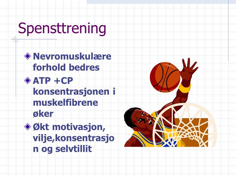 Maksimal styrketrening *Nevromuskulære forhold blir bedre: Flere aktive fibre, større impulsfrekvens fra motonevronene, bedre teknikk *Muskeltverrsnit