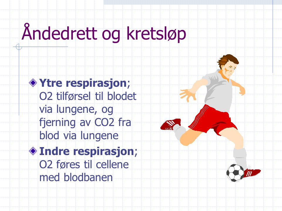 Åndedrett og kretsløp Vitalkapasitet = den største luftmengde som kan pustes inn eller ut i et åndedrag Trening synes ikke å påvirke vitalkapasiteten