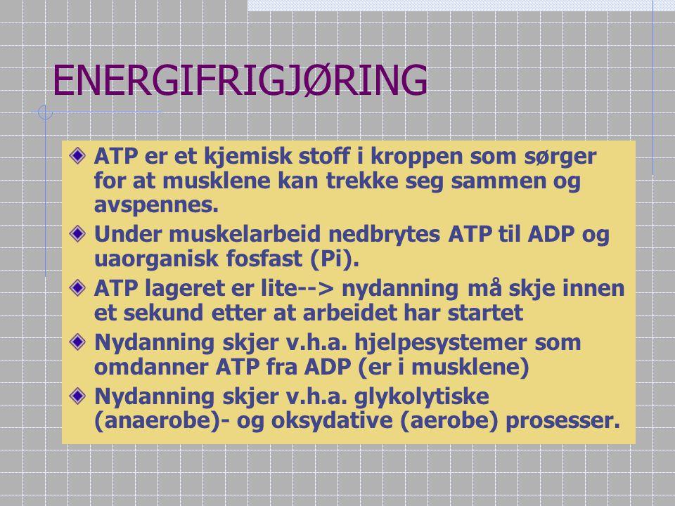 Fett / triglyserider Triglyserider:  A: Glyserol  B: Fettsyrer  B1:mettede fettsyrer  B2:enumettede fettsyrer  B3:flerumettede fettsyrer Fett lag