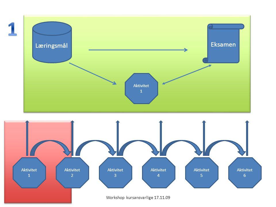Eksamen Læringsmål Aktivitet 1 Aktivitet 4 Aktivitet 5 Aktivitet 1 Aktivitet 2 Aktivitet 6 Aktivitet 3 Workshop kursansvarlige 17.11.09