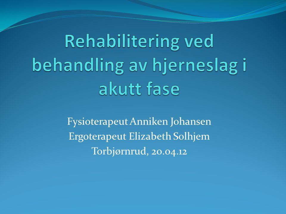 Rehabiliteringstjeneste  Støttefaggruppene er organisert i en egen avdeling under ledelse av Grete Heggheim  4 faggrupper samorganisert: Fysioterapi, Sosionom tjeneste, Klinisk ernæringsfysiolog, Ergoterapi.