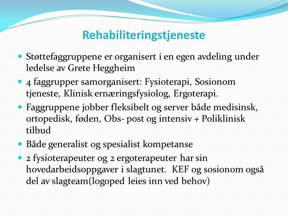 Rehabiliteringstjeneste  Støttefaggruppene er organisert i en egen avdeling under ledelse av Grete Heggheim  4 faggrupper samorganisert: Fysioterapi