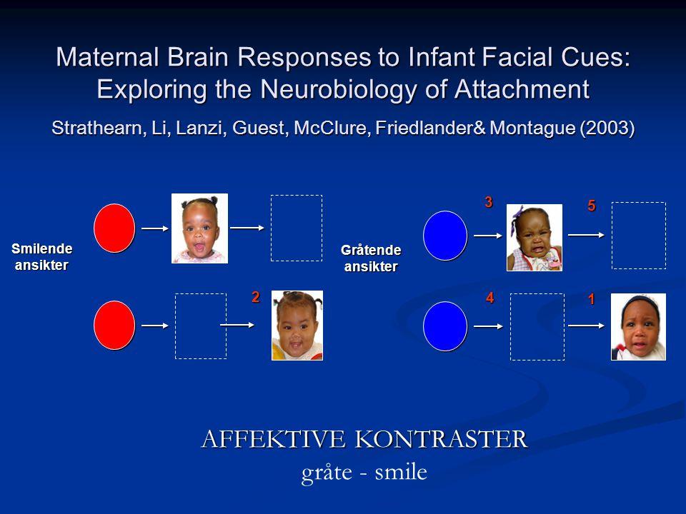 Gråtendeansikter 134 5 Smilendeansikter 2 AFFEKTIVE KONTRASTER gråte - smile Maternal Brain Responses to Infant Facial Cues: Exploring the Neurobiology of Attachment Strathearn, Li, Lanzi, Guest, McClure, Friedlander& Montague (2003)