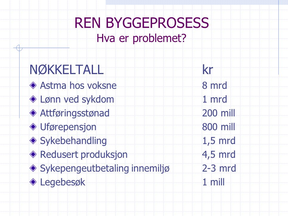 REN BYGGEPROSESS Hva er problemet.