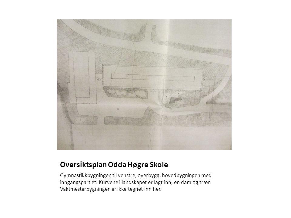 Oversiktsplan Odda Høgre Skole Gymnastikkbygningen til venstre, overbygg, hovedbygningen med inngangspartiet. Kurvene i landskapet er lagt inn, en dam