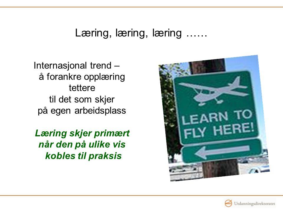 Læring, læring, læring …… Internasjonal trend – å forankre opplæring tettere til det som skjer på egen arbeidsplass Læring skjer primært når den på ul