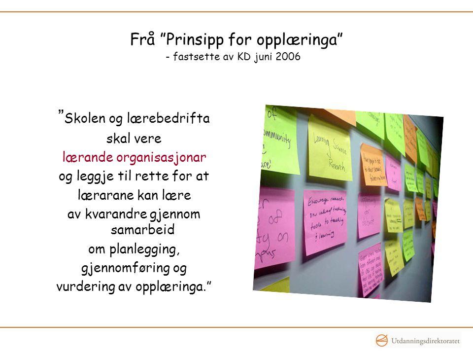 """Frå """"Prinsipp for opplæringa"""" - fastsette av KD juni 2006 """" Skolen og lærebedrifta skal vere lærande organisasjonar og leggje til rette for at læraran"""