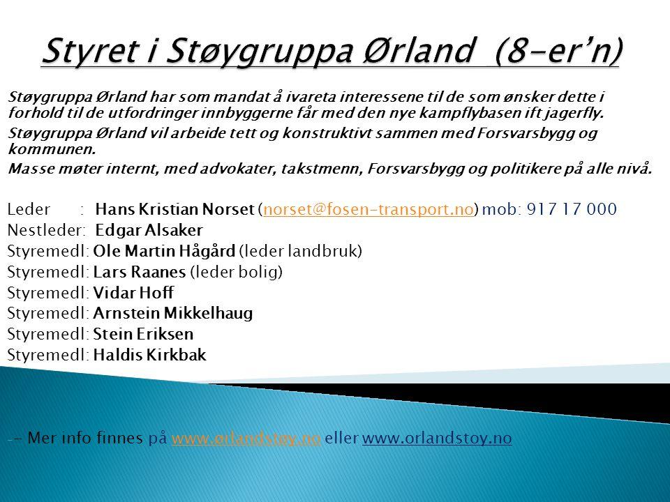 Støygruppa Ørland har som mandat å ivareta interessene til de som ønsker dette i forhold til de utfordringer innbyggerne får med den nye kampflybasen