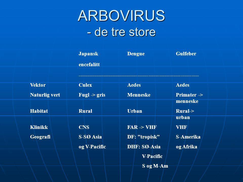 ARBOVIRUS - de tre store Japansk Dengue Gulfeber encefalitt ------------------------------------------------------------------- VektorCulexAedesAedes