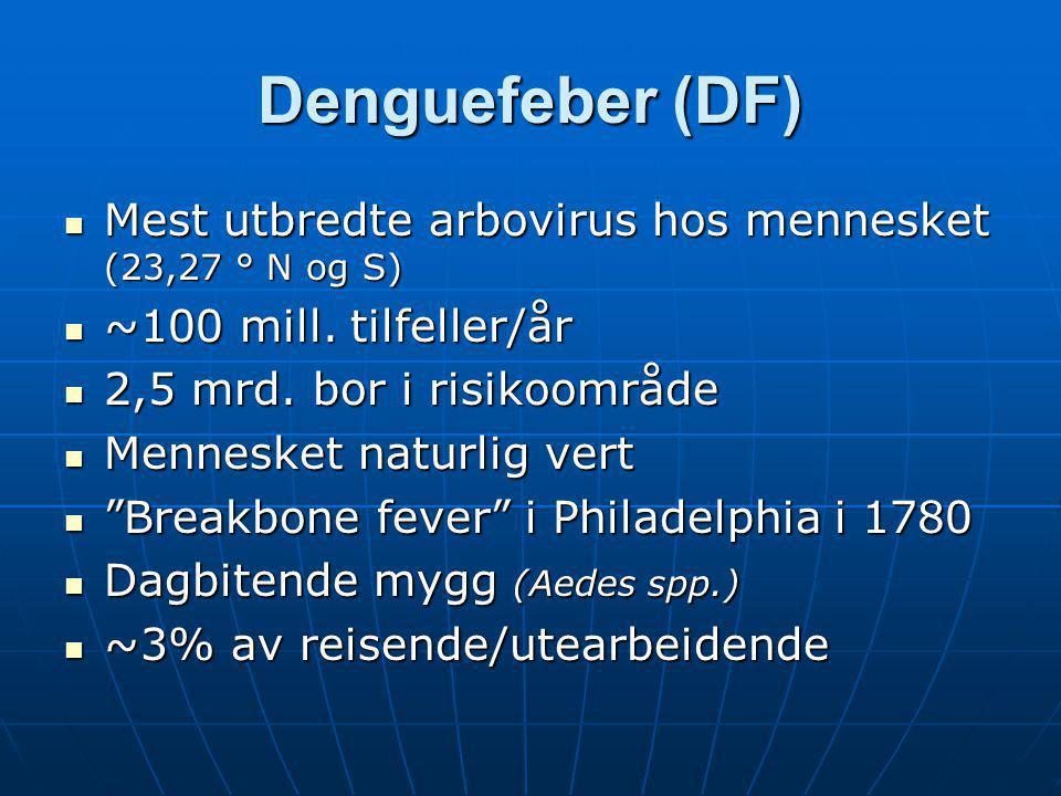 Denguefeber (DF)  Mest utbredte arbovirus hos mennesket (23,27 ° N og S)  ~100 mill. tilfeller/år  2,5 mrd. bor i risikoområde  Mennesket naturlig