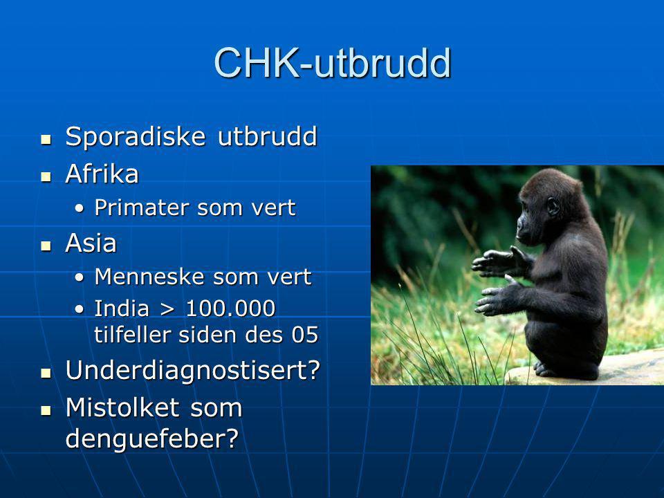 CHK-utbrudd  Sporadiske utbrudd  Afrika •Primater som vert  Asia •Menneske som vert •India > 100.000 tilfeller siden des 05  Underdiagnostisert? 
