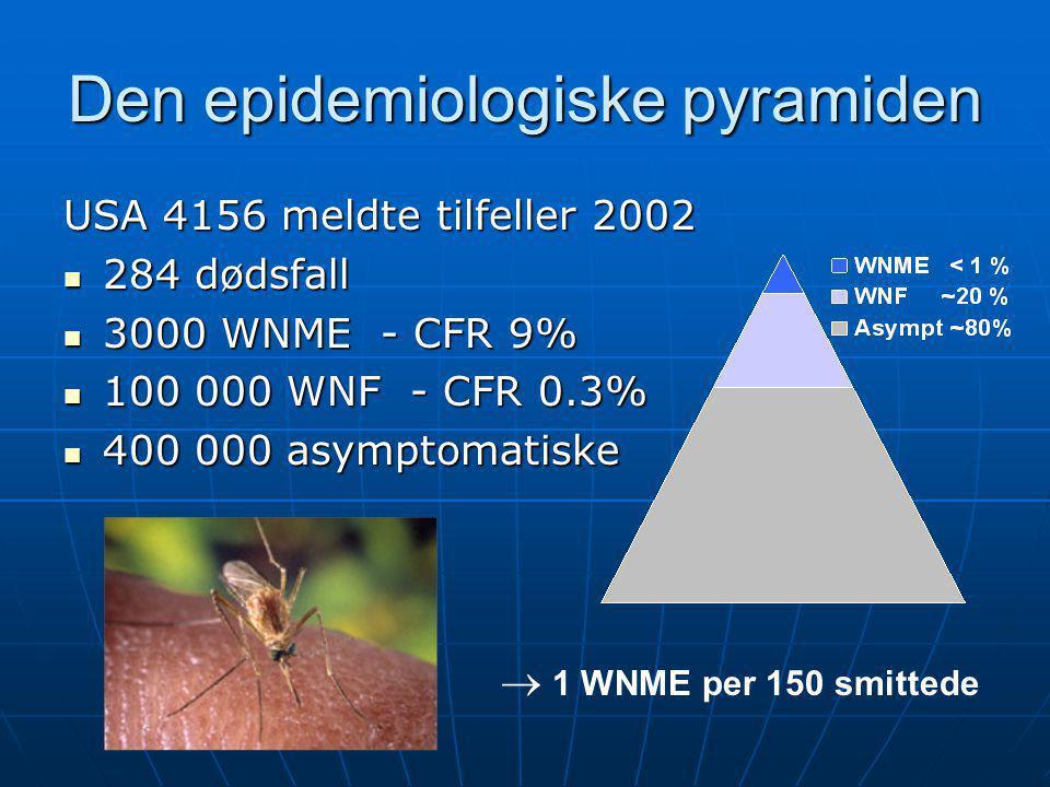 Den epidemiologiske pyramiden USA 4156 meldte tilfeller 2002  284 dødsfall  3000 WNME - CFR 9%  100 000 WNF - CFR 0.3%  400 000 asymptomatiske  1