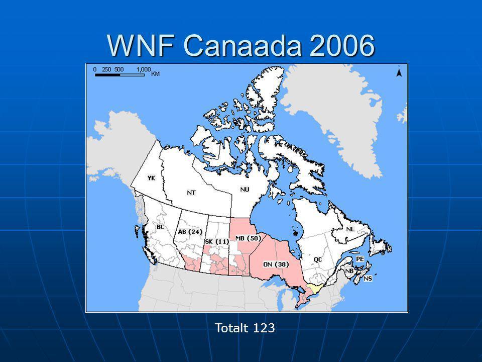 WNF Canaada 2006 Totalt 123