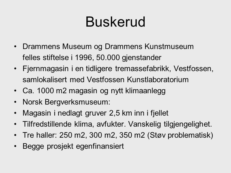 Buskerud •Drammens Museum og Drammens Kunstmuseum felles stiftelse i 1996, 50.000 gjenstander •Fjernmagasin i en tidligere tremassefabrikk, Vestfossen, samlokalisert med Vestfossen Kunstlaboratorium •Ca.