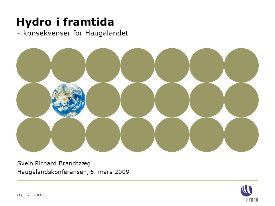 (12) 2009-03-06 Aluminiumsprodukter Store konsekvenser for Hydro 2008Framover 1 000 tonn (23) % Primæraluminium (~2 200) / (14 %) Gjennomsnittlig antall heltidsansatte 2.
