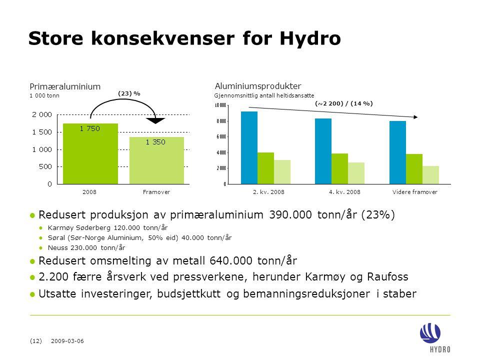 (12) 2009-03-06 Aluminiumsprodukter Store konsekvenser for Hydro 2008Framover 1 000 tonn (23) % Primæraluminium (~2 200) / (14 %) Gjennomsnittlig anta