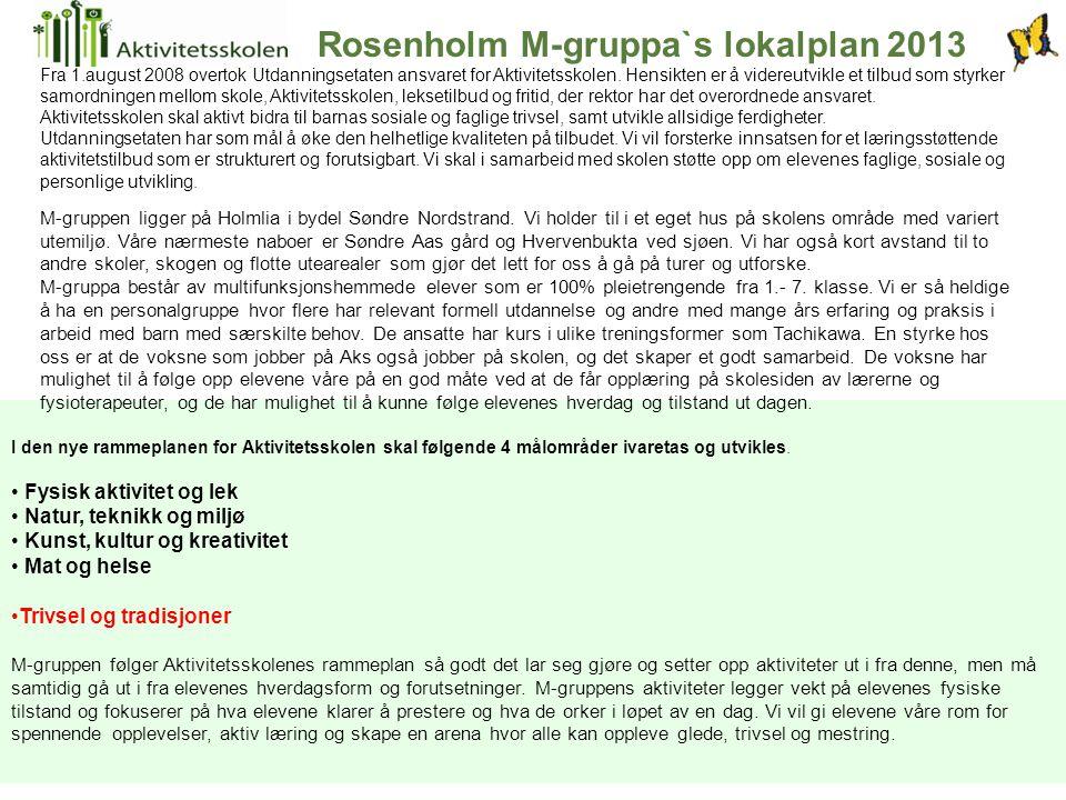 Rosenholm M-gruppa`s lokalplan 2013 M-gruppen ligger på Holmlia i bydel Søndre Nordstrand. Vi holder til i et eget hus på skolens område med variert u