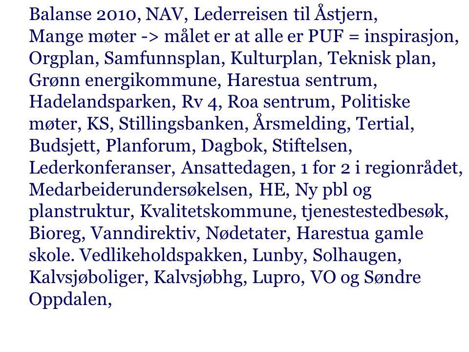 Balanse 2010, NAV, Lederreisen til Åstjern, Mange møter -> målet er at alle er PUF = inspirasjon, Orgplan, Samfunnsplan, Kulturplan, Teknisk plan, Grø
