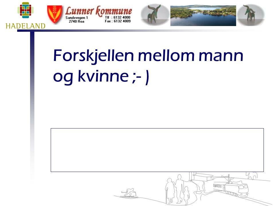 Lunner 2009 Rådmann 4 typer medarbeidere  v/ Helle Hedegaard Hein  Primadonna er en som arbeider for et høyere formål – en som setter høy standard for sitt arbeid.