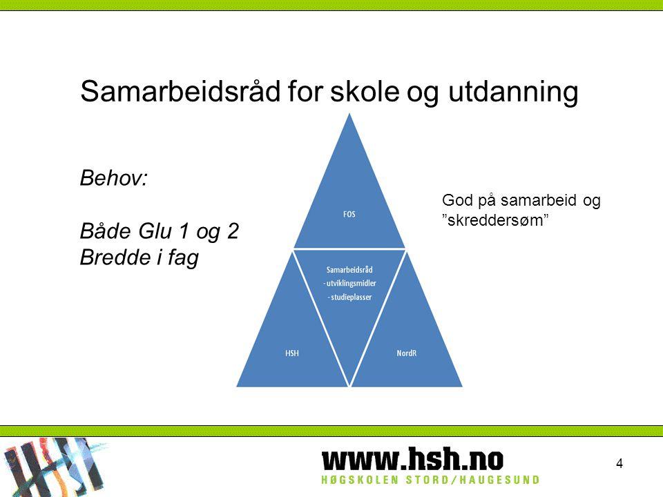 Samarbeidsråd for skole og utdanning 4 Behov: Både Glu 1 og 2 Bredde i fag God på samarbeid og skreddersøm