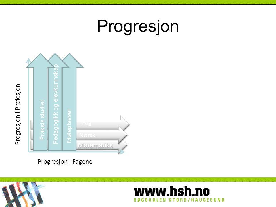 Fag Matematikk Progresjon i Profesjon Progresjon i Fagene Norsk Møteplasser Pedagogikk og elevkunnskap Praksis studiet Progresjon