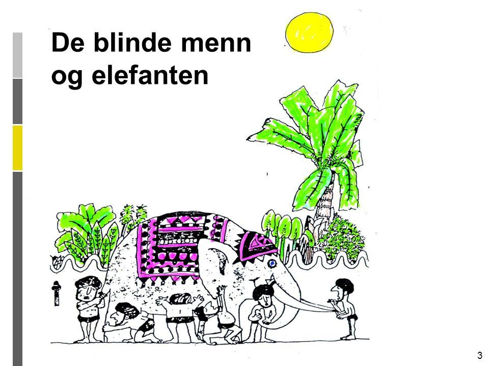 3 De blinde menn og elefanten