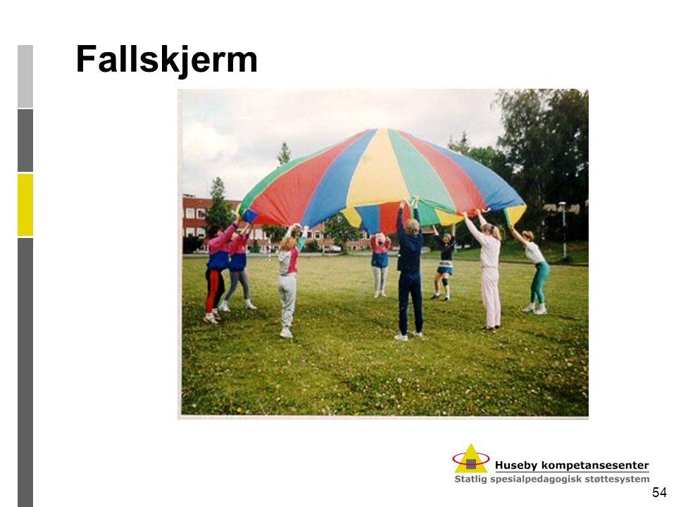 54 Fallskjerm