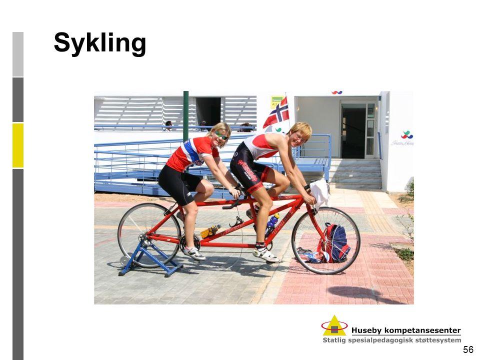 56 Sykling