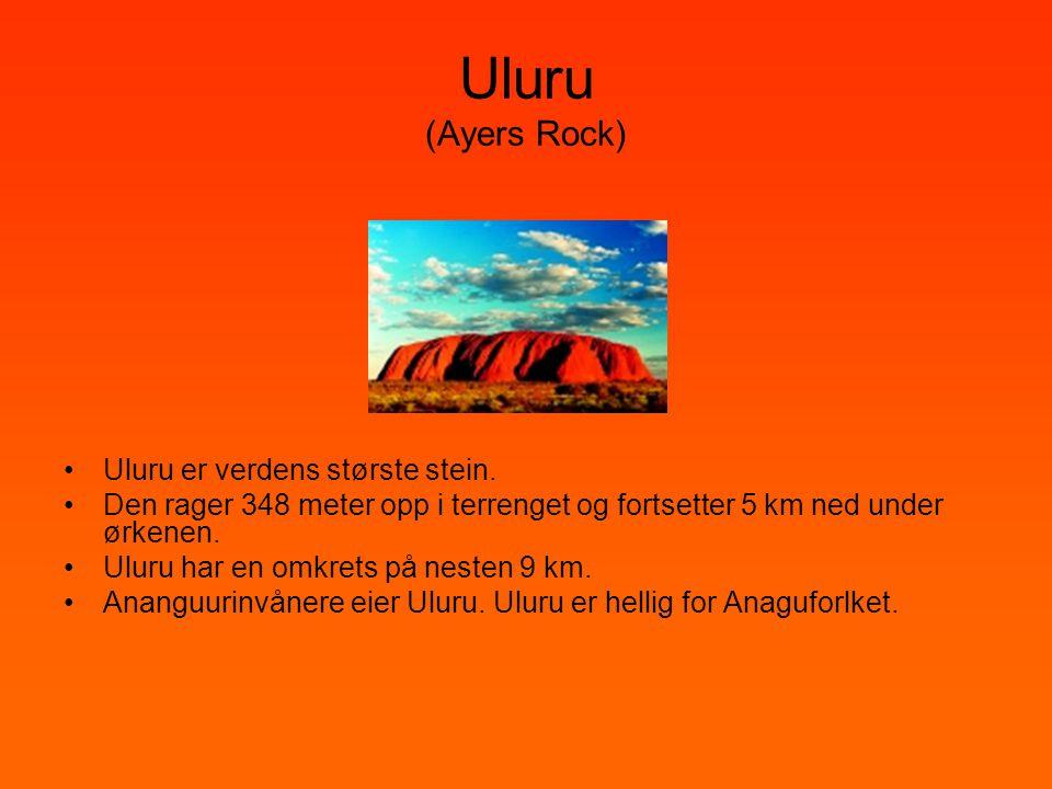 Uluru (Ayers Rock) •Uluru er verdens største stein. •Den rager 348 meter opp i terrenget og fortsetter 5 km ned under ørkenen. •Uluru har en omkrets p