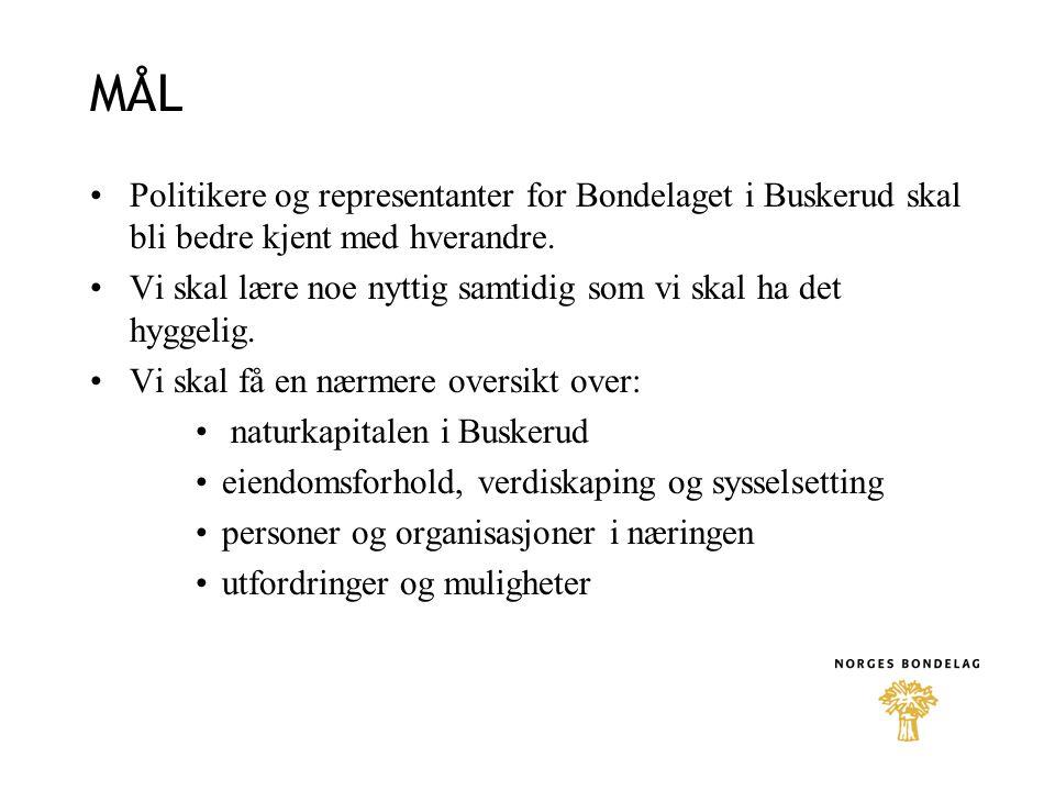 MÅL •Politikere og representanter for Bondelaget i Buskerud skal bli bedre kjent med hverandre. •Vi skal lære noe nyttig samtidig som vi skal ha det h