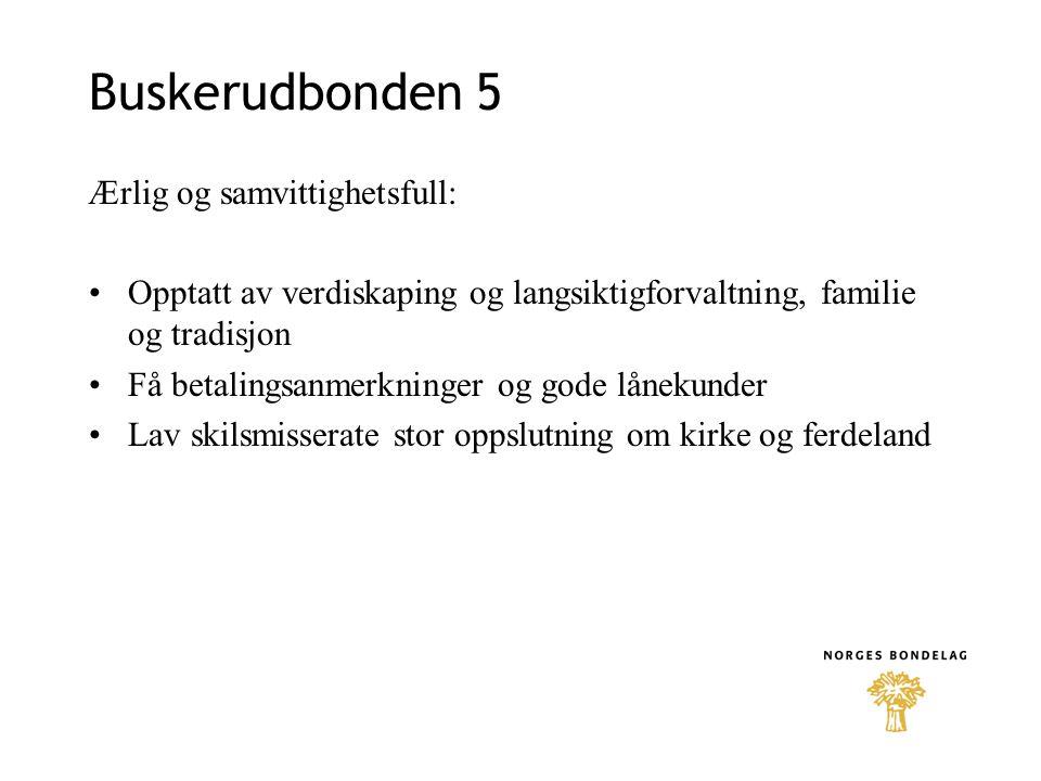 Buskerudbonden 5 Ærlig og samvittighetsfull: •Opptatt av verdiskaping og langsiktigforvaltning, familie og tradisjon •Få betalingsanmerkninger og gode