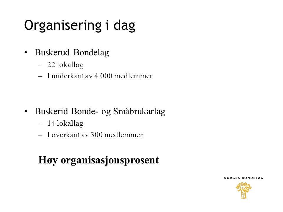 Organisering i dag •Buskerud Bondelag –22 lokallag –I underkant av 4 000 medlemmer •Buskerid Bonde- og Småbrukarlag –14 lokallag –I overkant av 300 me