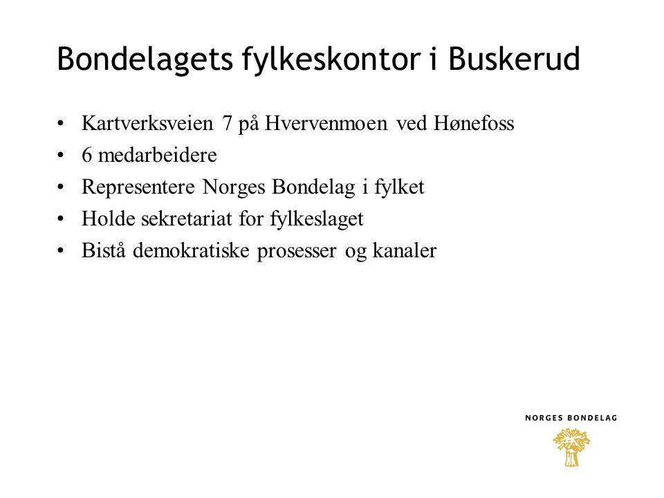 Bondelagets fylkeskontor i Buskerud •Kartverksveien 7 på Hvervenmoen ved Hønefoss •6 medarbeidere •Representere Norges Bondelag i fylket •Holde sekret