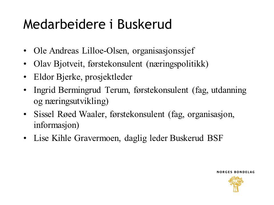 Medarbeidere i Buskerud •Ole Andreas Lilloe-Olsen, organisasjonssjef •Olav Bjotveit, førstekonsulent (næringspolitikk) •Eldor Bjerke, prosjektleder •I