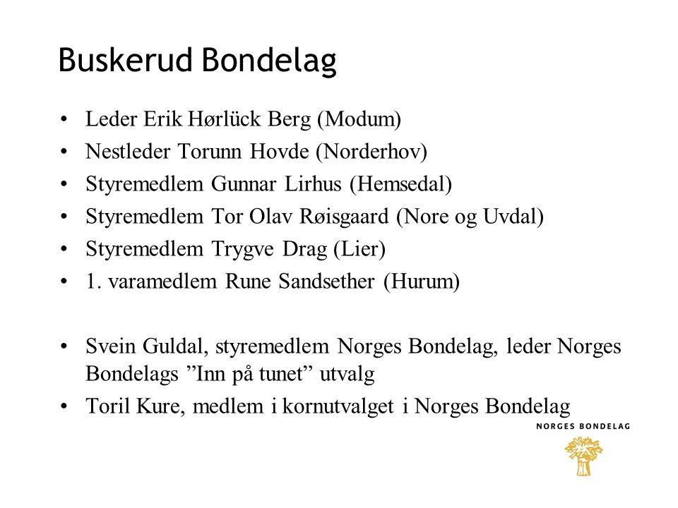 Buskerud Bondelag •Leder Erik Hørlück Berg (Modum) •Nestleder Torunn Hovde (Norderhov) •Styremedlem Gunnar Lirhus (Hemsedal) •Styremedlem Tor Olav Røi