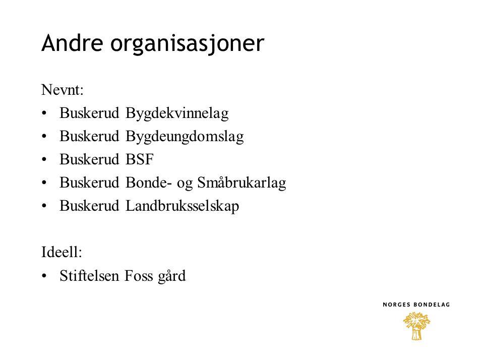 Andre organisasjoner Nevnt: •Buskerud Bygdekvinnelag •Buskerud Bygdeungdomslag •Buskerud BSF •Buskerud Bonde- og Småbrukarlag •Buskerud Landbruksselsk