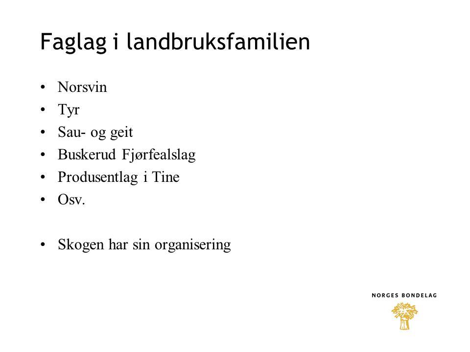 Faglag i landbruksfamilien •Norsvin •Tyr •Sau- og geit •Buskerud Fjørfealslag •Produsentlag i Tine •Osv. •Skogen har sin organisering