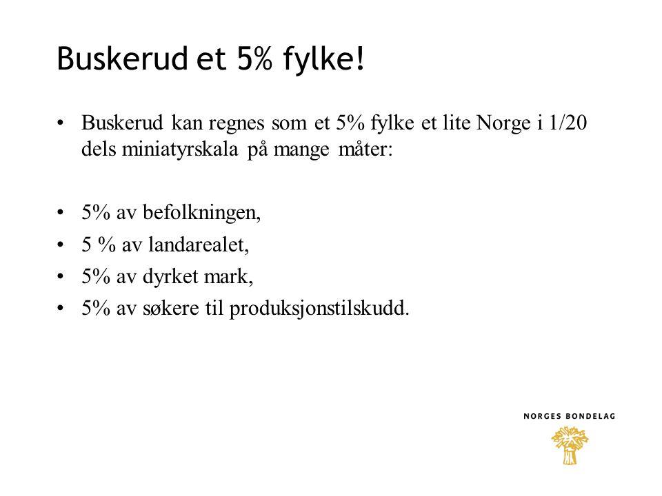 Buskerud et 5% fylke! •Buskerud kan regnes som et 5% fylke et lite Norge i 1/20 dels miniatyrskala på mange måter: •5% av befolkningen, •5 % av landar