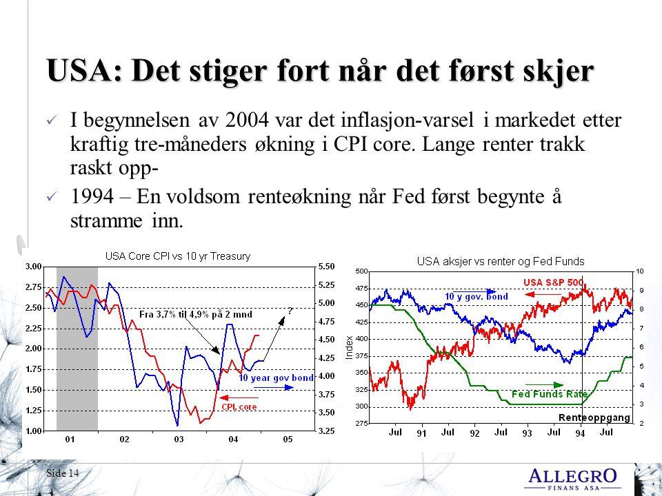 Side 14 USA: Det stiger fort når det først skjer  I begynnelsen av 2004 var det inflasjon-varsel i markedet etter kraftig tre-måneders økning i CPI core.