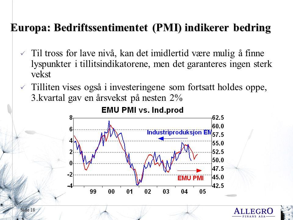 Side 18 Europa: Bedriftssentimentet (PMI) indikerer bedring  Til tross for lave nivå, kan det imidlertid være mulig å finne lyspunkter i tillitsindikatorene, men det garanteres ingen sterk vekst  Tilliten vises også i investeringene som fortsatt holdes oppe, 3.kvartal gav en årsvekst på nesten 2%
